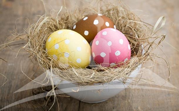 Wir wünschen Euch ein frohes Osterfest!
