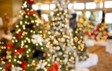 Die Weihnachtsgeschichte in der Zehntkapelle