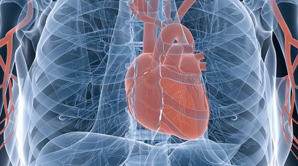 Vortrag: Behüte dein Herz mit allem Fleiß